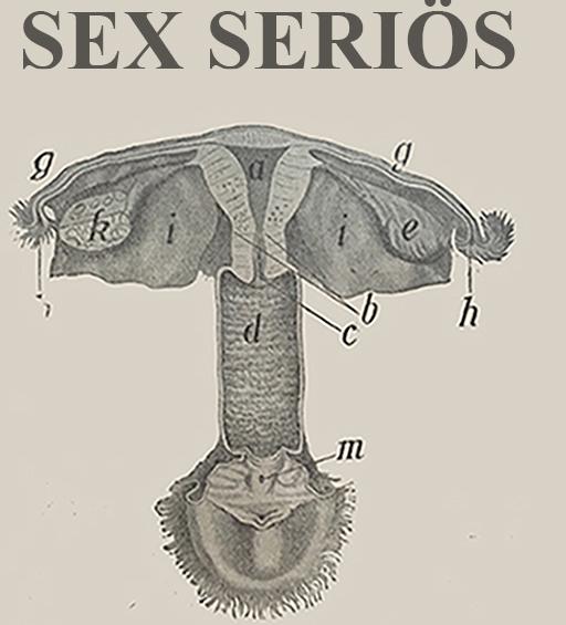 Sex seriös